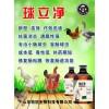 鸡球虫病用什么药治疗 鸡球虫的症状