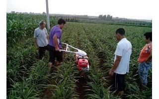 培土机培土机视频莱州奥伦开沟培土机培土机的安装和使用