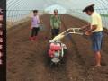 捷马开沟培土机价格最先进的开沟培土机多少钱立盈开沟培土机价格