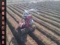 葡萄培土机多少钱一台葡萄培土机开沟机价格小型柴油开沟机