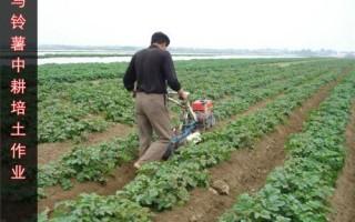 开沟机械开沟培土机高清视频马铃薯开沟培土机开沟培土机品牌