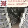 阶梯式喂料机 养殖设备 喂料机 养鸡喂料机 行车式喂料机