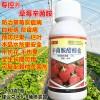 草莓专用药防**病烂果烂叶杀菌剂灰霉病炭疽病叶片斑点病辛菌胺