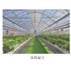 草莓种植支架与种植槽