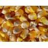 采购玉米高粱大米大豆等酿酒原料