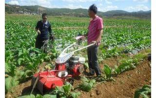 甘蔗中耕培土机哪种好价格多少钱一台小白龙开沟培土机