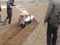 开沟起垄机生姜开沟培土机的视频三山开沟培土机重庆开沟机