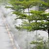 高压喷雾系统雾森系统景观喷雾降温加湿高压雾化降温加湿系统