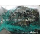 供应活牛蛙及各种鱼类海鲜 肉质鲜美 价格便宜