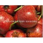 供应莱北农副产品山楂果---酸甜、美味