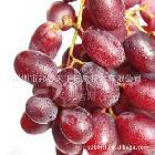 美国进口无籽红提 脆甜口感 新鲜水果 5斤装 货到付款
